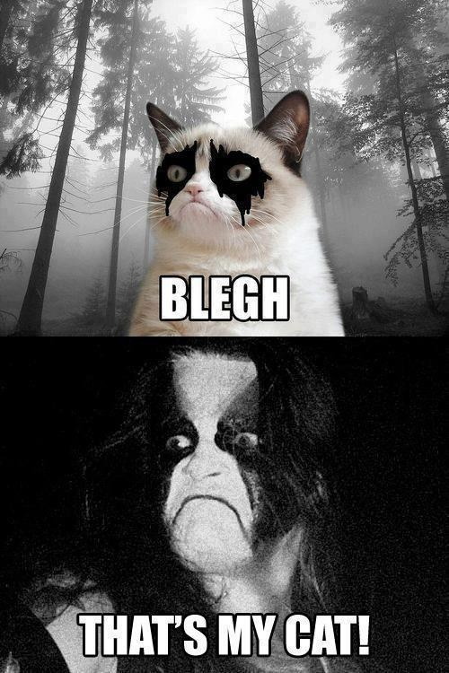 abbath black metal heavy metal Grumpy Cat - 6880973568