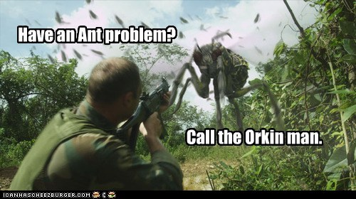 dragon wasps orkin call problem syfy ant