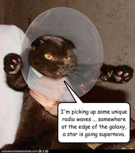 radio,universe,cone of shame,captions,stars,Cats,space,collar