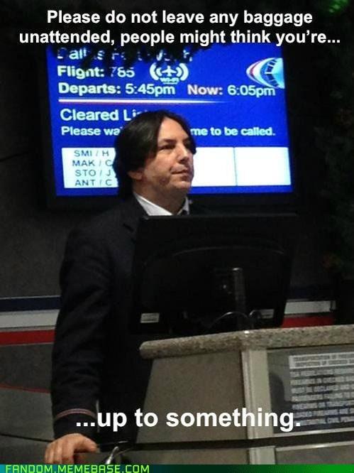 Snape, Snape, TSA Snape
