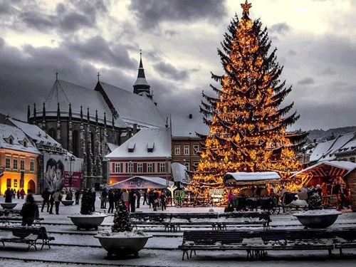 christmas,christmas tree,cityscape,romania,holidays