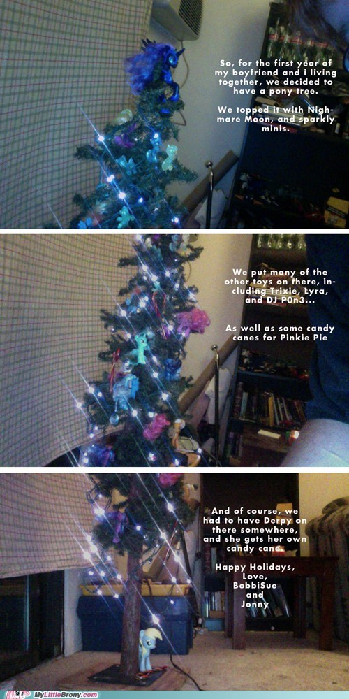 christmas,IRL,christmas tree