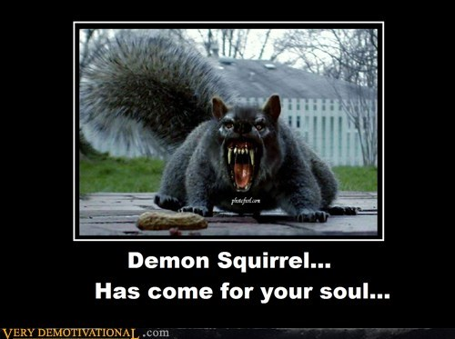 soul squirrel demon