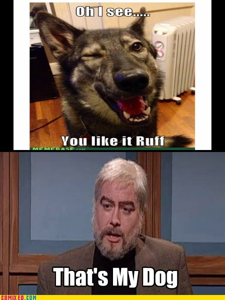 Reframe celebrity jeopardy TV trebek SNL ruff - 6883442944