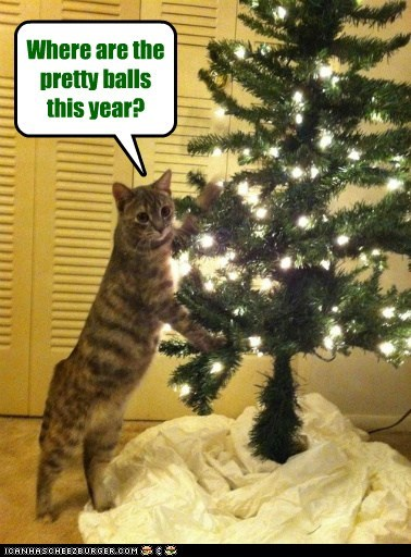Where are the pretty balls this year?