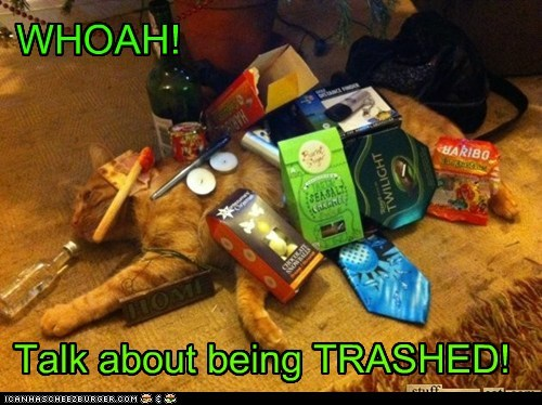 WHOAH! Talk about being TRASHED!