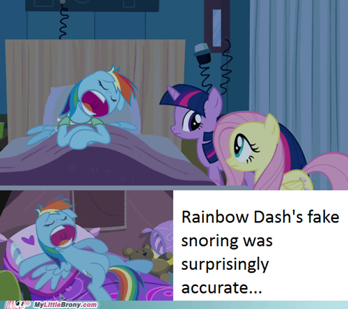 rainbow dash snoring accurate