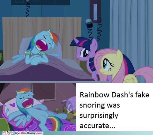 rainbow dash snoring accurate - 6887459072