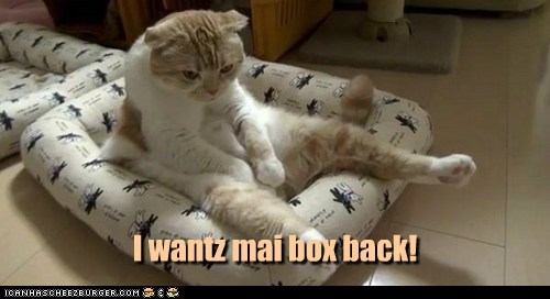 pout bed box captions Cats - 6887592704