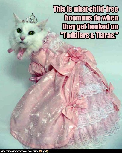 "This is what child-free hoomans do when they get hooked on ""Toddlers & Tiaras."""