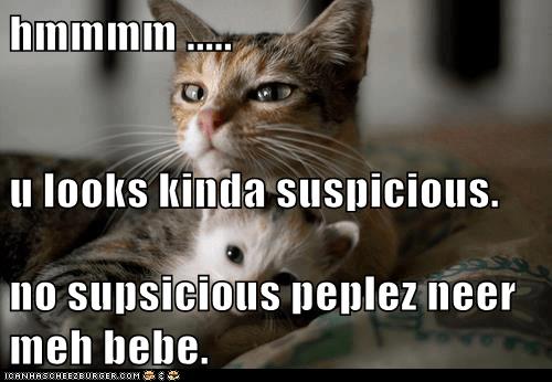 hmmmm ..... u looks kinda suspicious. no supsicious peplez neer meh bebe.