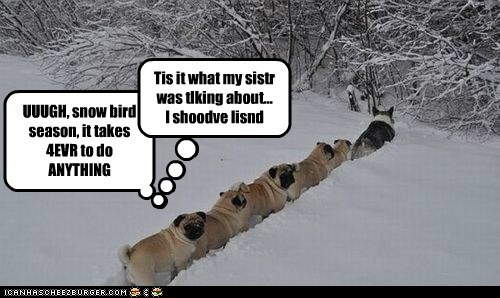 UUUGH, snow bird season, it takes 4EVR to do ANYTHING Tis it what my sistr was tlking about... I shoodve lisnd