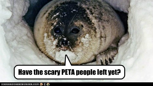 Have the scary PETA people left yet?