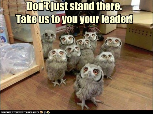 Don't just stand there. Take us to you your leader!