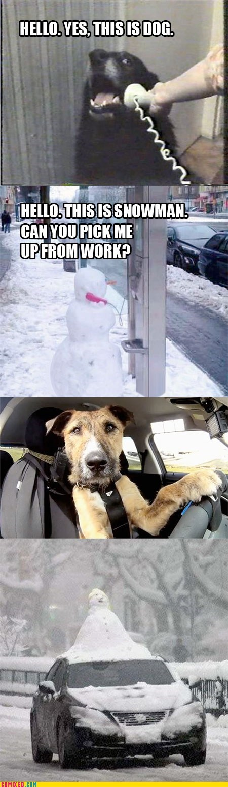 yes this is dog driving payphone snowman dogs hello yes this is dog snowmen cars Memes