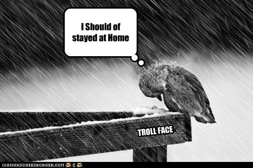 I Should of stayed at Home TROLL FACE