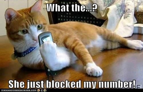 number captions girlfriend cell phone Cats - 6890364672
