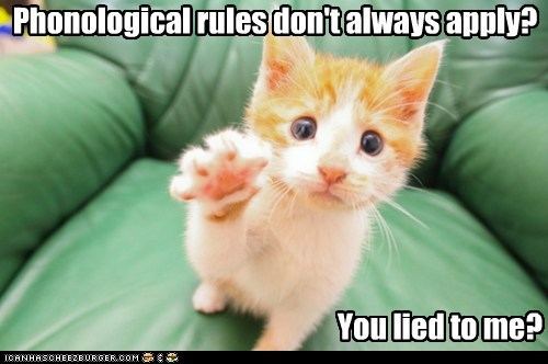 Phonological rules don't always apply? You lied to me?