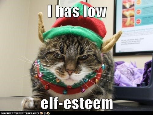 christmas,self esteem,elf,pun,captions,Cats