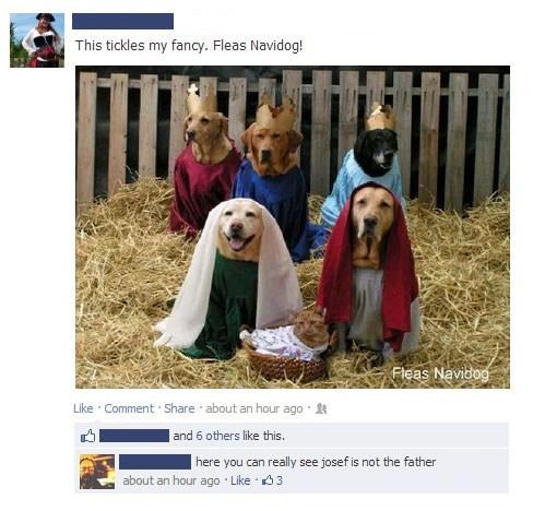 jesus Nativity Scene christmas dogs Nativity costume Cats - 6890805504
