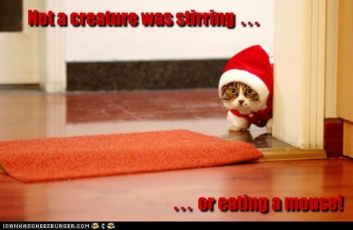 Not a creature was stirring  . . .