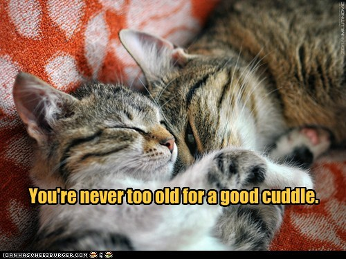 And nobody cuddles gooder than a kitteh.
