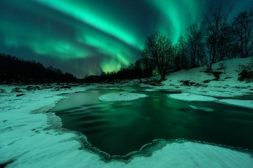 aurora borealis northern lights snow winter pretty colors - 6891526144