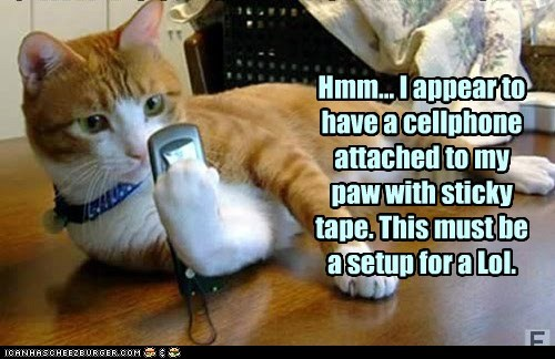 phone,captions,cell phone,Cats,tape,set up