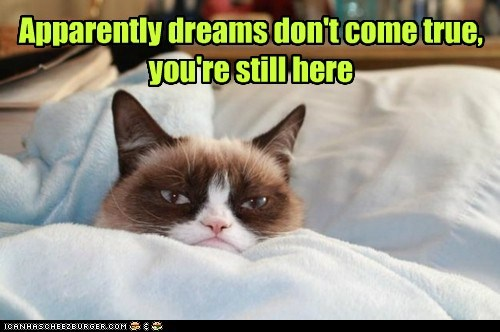 dream,tardar sauce,captions,Grumpy Cat,Cats