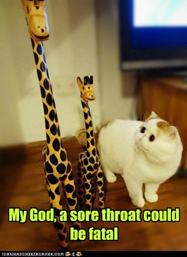 flu,captions,sore throat,snoopy,giraffes,neck,Cats,fatal