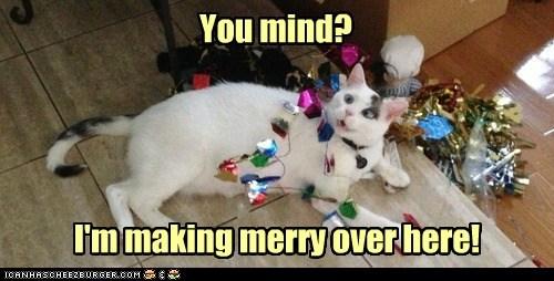 christmas captions ornament Cats merry - 6893280256