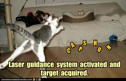 C A P S H U N Laser guidance system activated and target acquired.