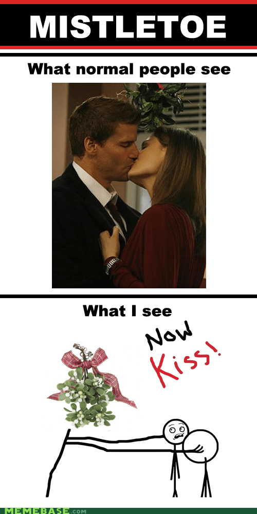 shipping,now kiss,mistletoe,bones