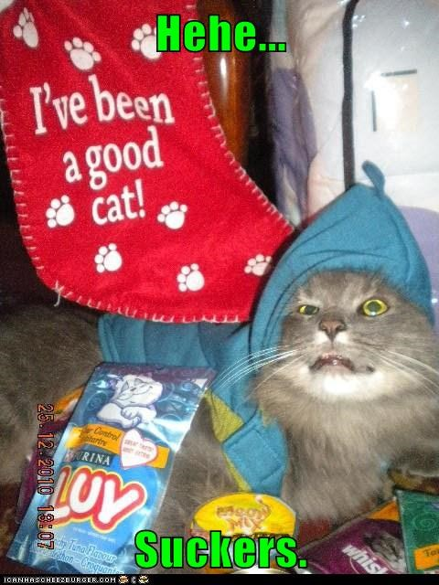 christmas stocking captions evil good Cats