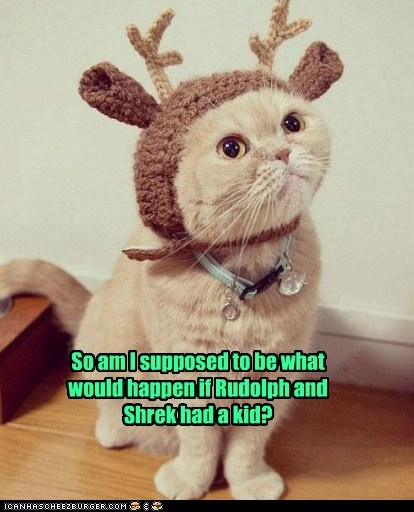 outfit,christmas,antlers,captions,shrek,Cats,hat,rudolph