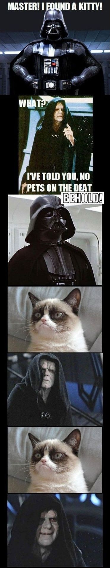 star wars Movie Grumpy Cat tard darth vader