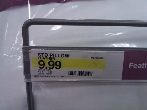 Pillow,no thanks,STD