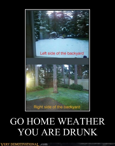 drunk weather backyard - 6894005248