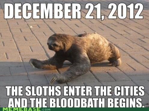december 21 apocalypse sloth - 6894146560