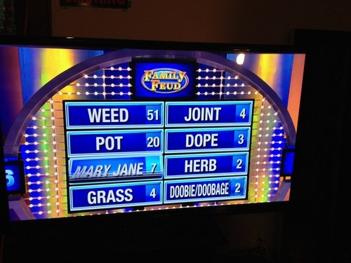drugs marijuana family feud doobage - 6894173184