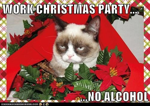 Christmas Party Meme.Work Christmas Party No Alcohol Cheezburger Funny