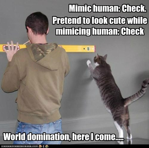 Mimic human: Check.