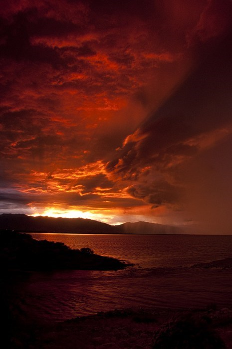 red ocean landscape - 6894500096