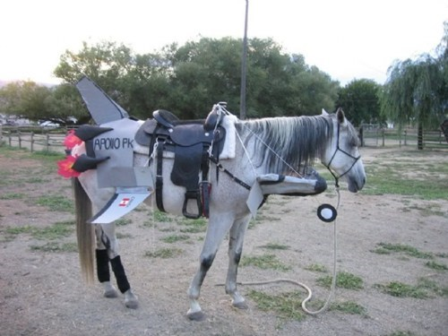 costume rocket animals horse