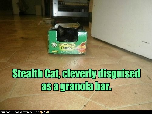 ninja stealthy captions granola bar hide Cats - 6895449856