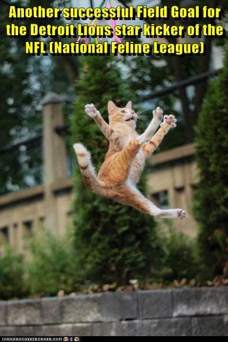 Another successful Field Goal for the Detroit Lions star kicker of the NFL (National Feline League)