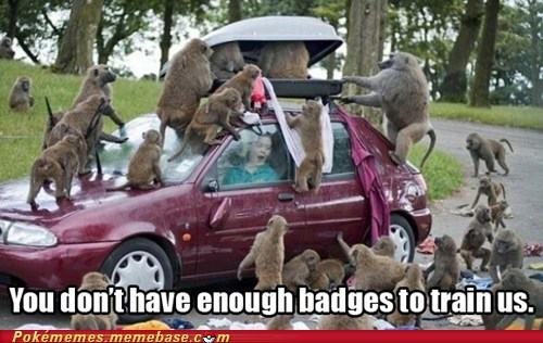 badges arceus animals - 6896751616