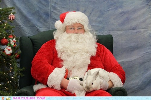 Bunday christmas reader squee pets rabbit santa claus bunny squee holidays