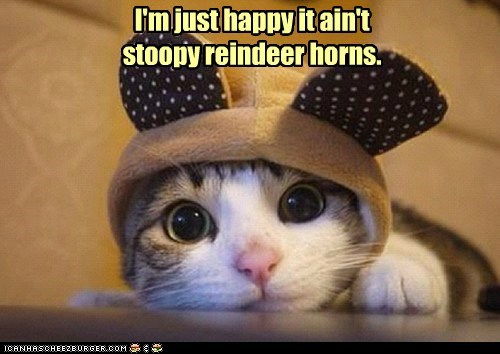 outfit,christmas,reindeer,captions,Cats,hat