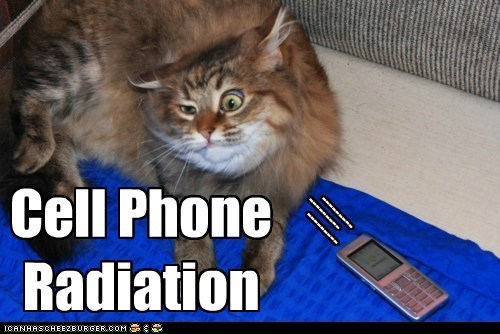 herp radiation cell captions cellphone Cats - 6897400064